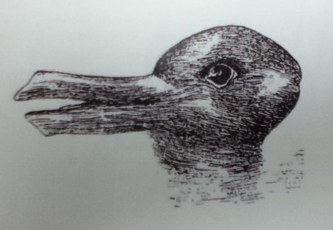 "Image result for wittgenstein duck"""